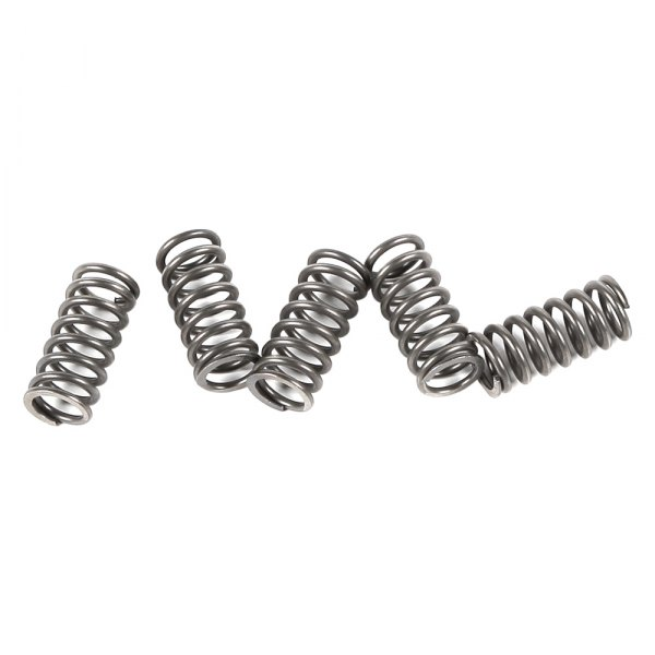 EBC Replacement Clutch Springs For Triumph 1994 Trident 900